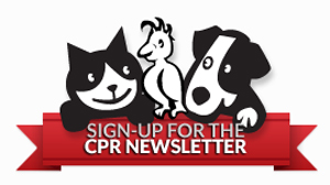 Sign-up for the CPR Newsletter
